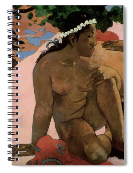 Are You Jealous Spiral Notebook by Paul Gauguin