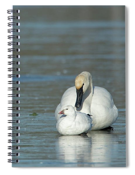 Are You My Mommy? Spiral Notebook