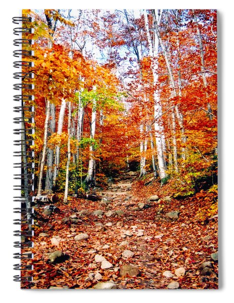 Arethusa Falls Trail Spiral Notebook