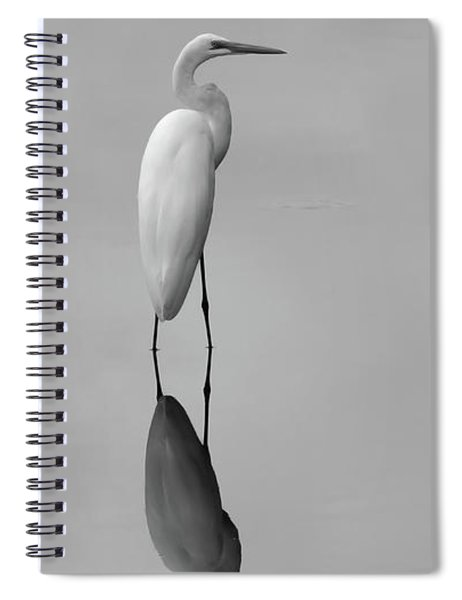 Argent Mirror Black And White Spiral Notebook