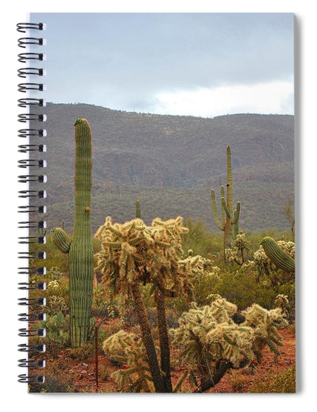 Arizona's Sonoran Desert  Spiral Notebook