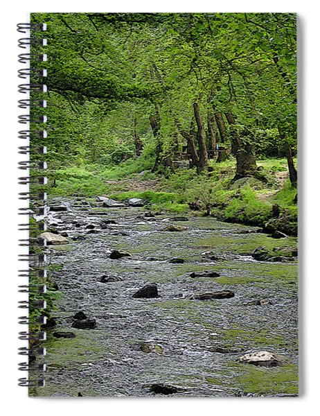 Art In The Forest Spiral Notebook
