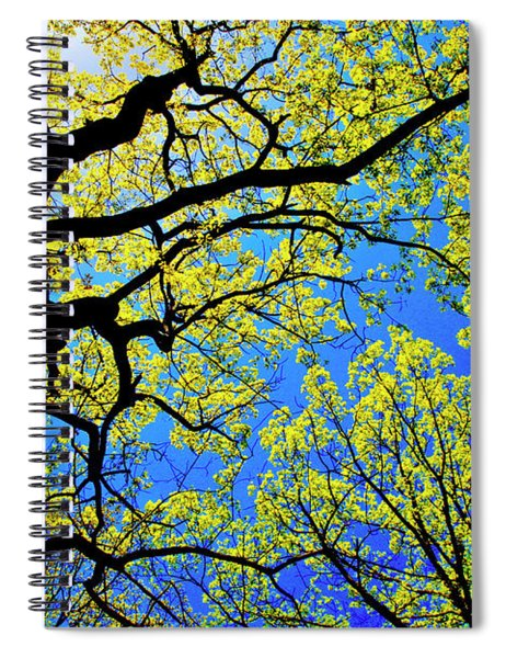 Artsy Tree Canopy Series, Early Spring - # 01 Spiral Notebook
