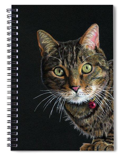 Mesmer Eyes Spiral Notebook