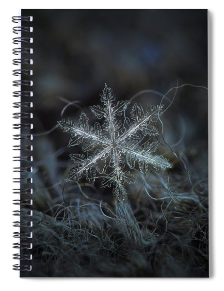 Leaves Of Ice Spiral Notebook