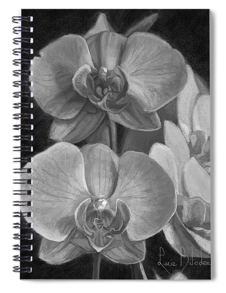 Orchids - Black And White Spiral Notebook