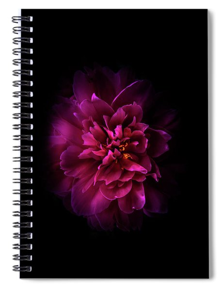 Backyard Flowers 55 Color Version Spiral Notebook
