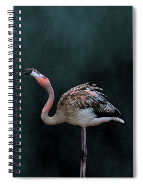 Song Of The Flamingo Spiral Notebook