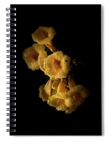 Backyard Flowers 63 Color Version Spiral Notebook