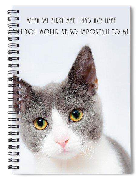 When We First Met Spiral Notebook