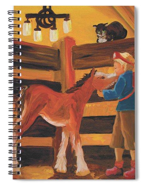 Inside The Barn Spiral Notebook