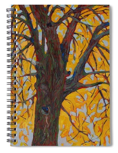 Ash Fall Spiral Notebook
