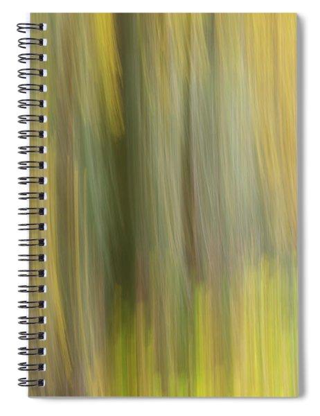 Aspen Blur #2 Spiral Notebook