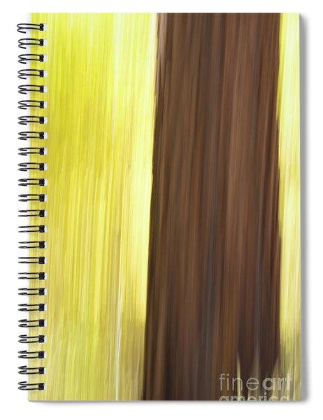 Aspen Blur #4 Spiral Notebook