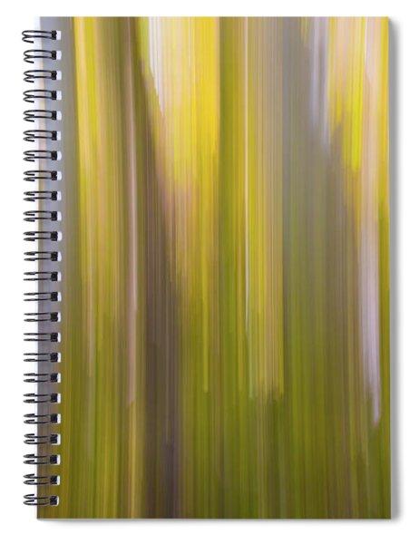 Aspen Blur #6 Spiral Notebook