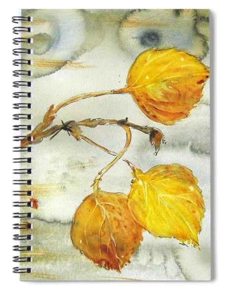 Aspen Leaves Spiral Notebook