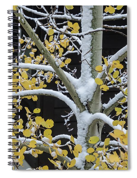 Aspen Snow Spiral Notebook