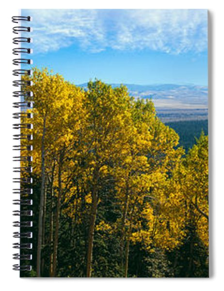 Aspen Trees In A Forest, Jackson Hole Spiral Notebook