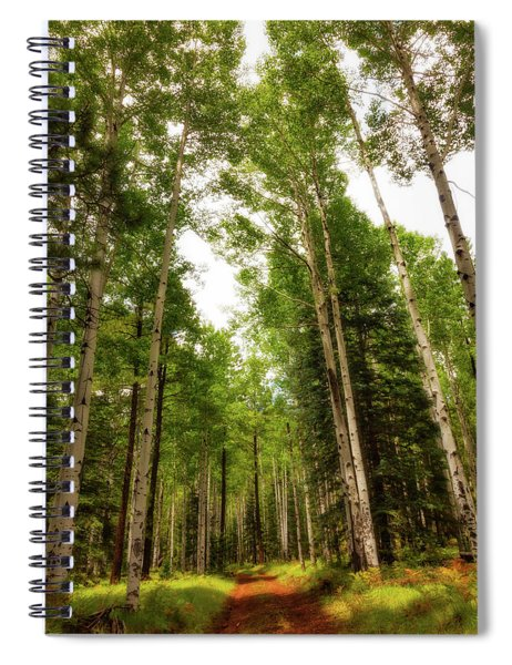 Aspens Galore Spiral Notebook by Rick Furmanek