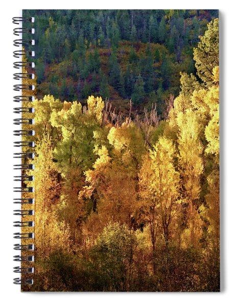 Aspens In Autumn I Spiral Notebook
