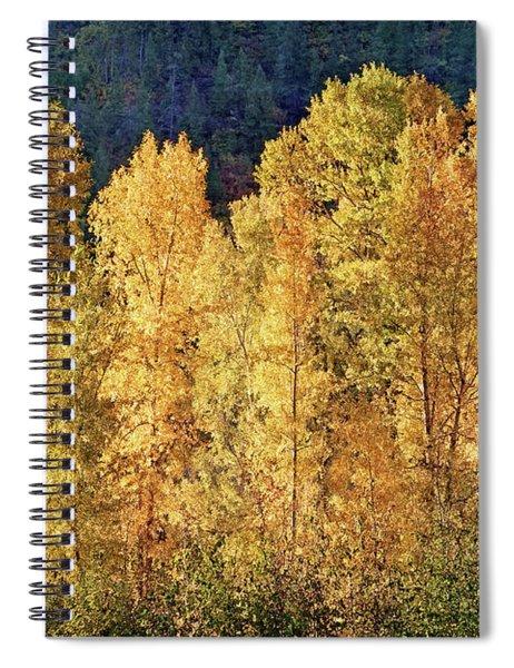 Aspens In Autumn IIi Spiral Notebook