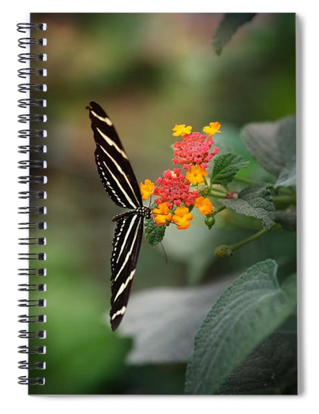 At Last Spiral Notebook