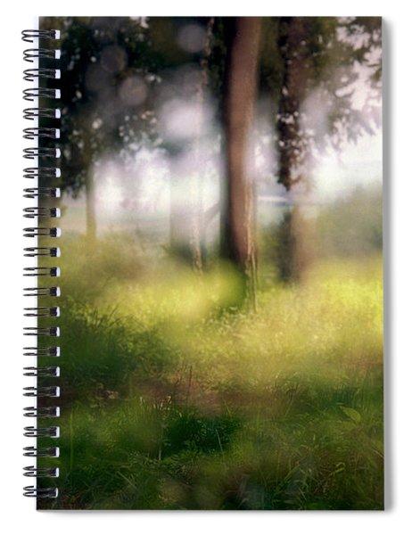 At Menashe Forest Spiral Notebook