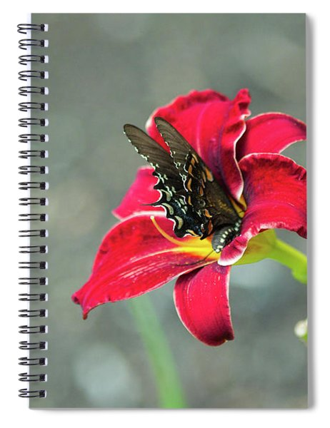 At One With The Orchid 2 Spiral Notebook