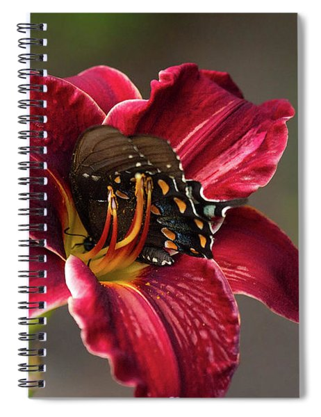 At One With The Orchid Spiral Notebook