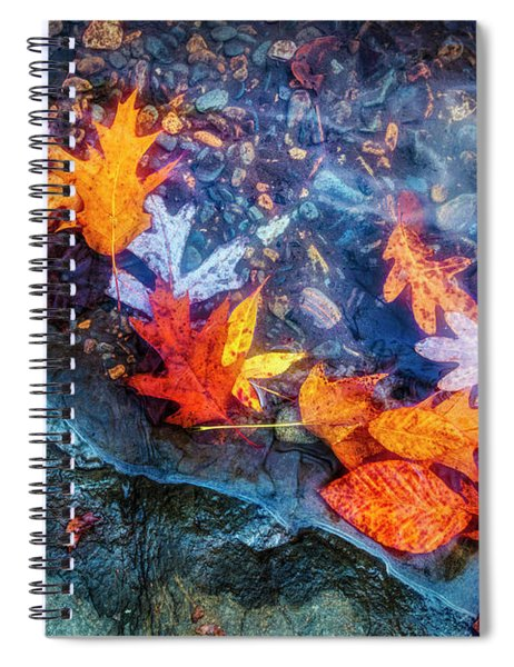 At The Edge Of The Water Painterly Spiral Notebook