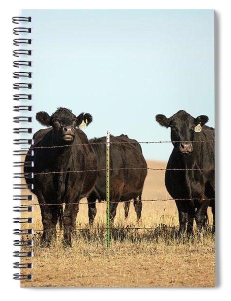 At The Fence Spiral Notebook
