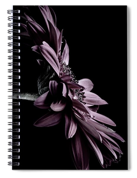 At The Moonlight Spiral Notebook