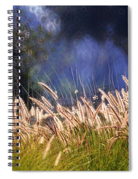 At The Rock Garden Tel Aviv Spiral Notebook