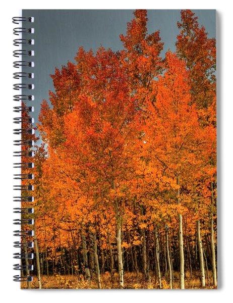 At Their Peak Spiral Notebook