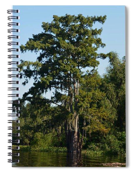 Atchafalaya Basin 11 Spiral Notebook