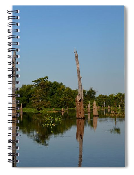 Atchafalaya Basin 18 Spiral Notebook