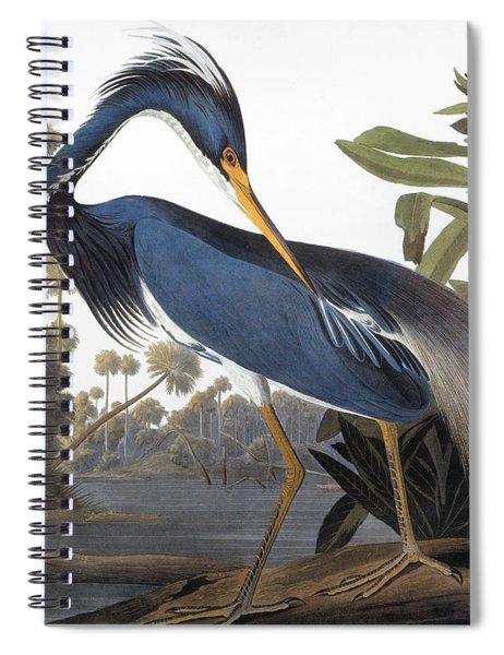 Audubon Heron, 1827 Spiral Notebook