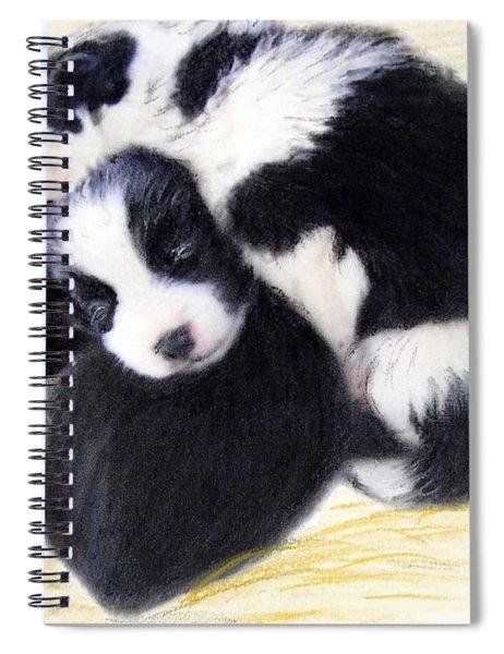 Australian Cattle Dog Puppies Spiral Notebook