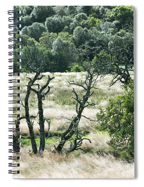 Autumn And Grass In Isle Of Skye, Uk Spiral Notebook