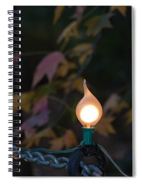 Autumn Bulb Spiral Notebook