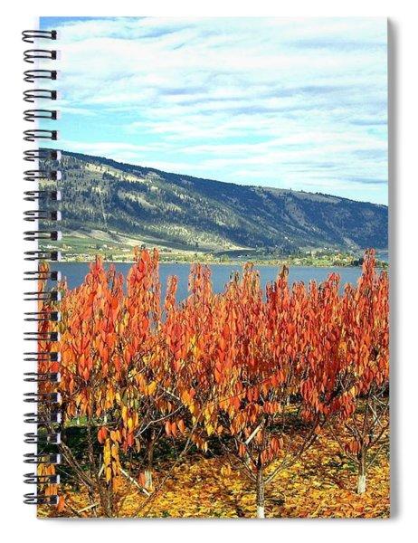 Autumn Cherry Orchard Spiral Notebook