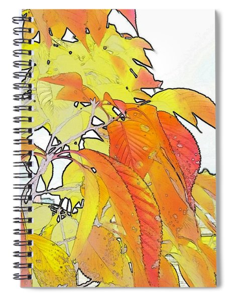 Autumn Color Spiral Notebook