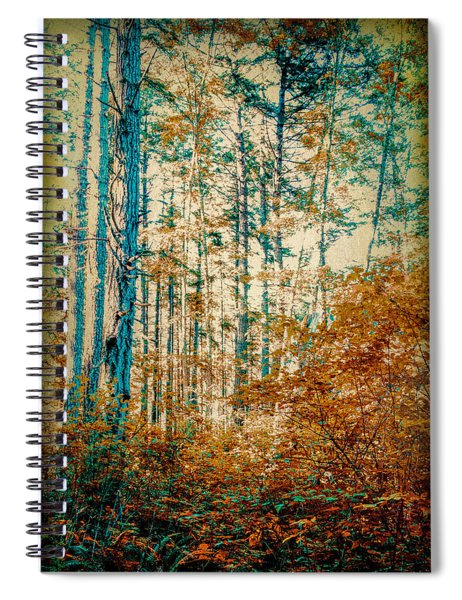 Autumn Colors Spiral Notebook