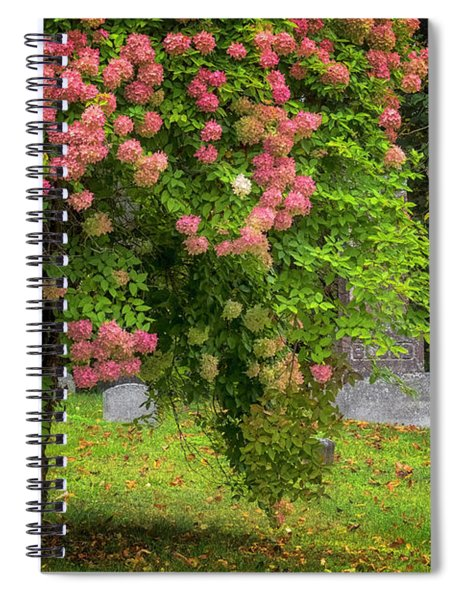 Autumn Hydrangeas Spiral Notebook