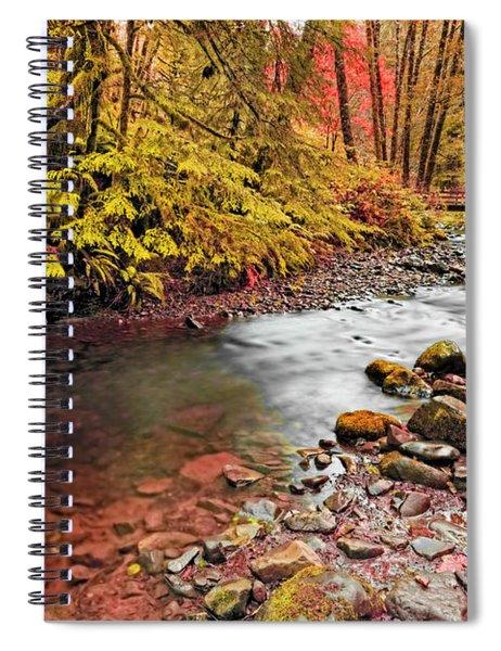 Autumn Sunrise In An Oregon Rain Forest  Spiral Notebook