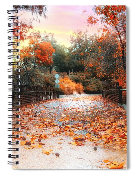 Spiral Notebook featuring the photograph Autumn In Discovery Lake by Alison Frank
