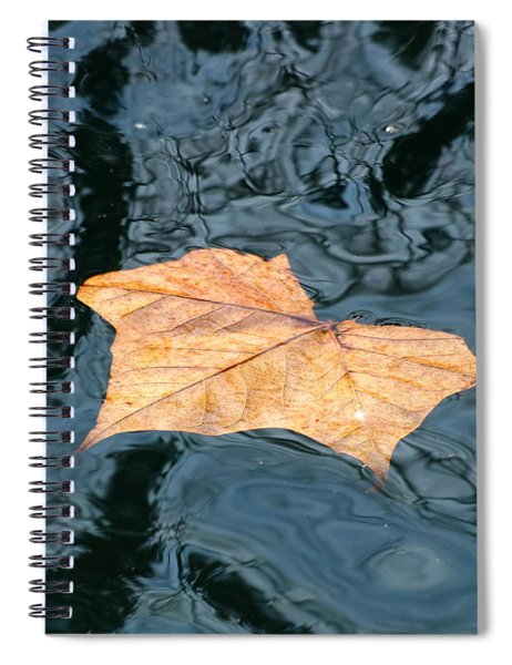 Autumn Leaf Floating On Water Spiral Notebook