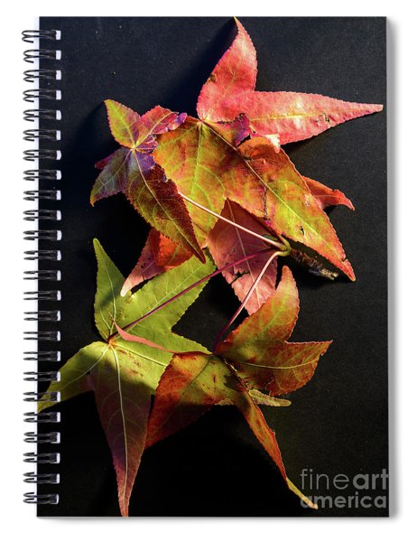 Autumn Leaves 1 Spiral Notebook
