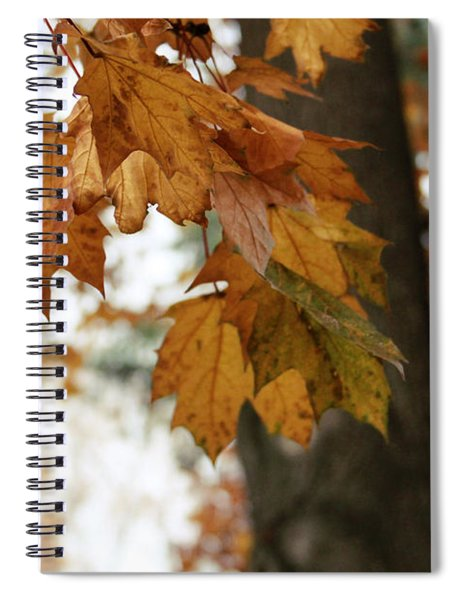 Autumn Leaves 2- By Linda Woods Spiral Notebook
