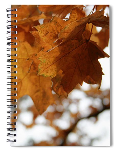 Autumn Leaves- By Linda Woods Spiral Notebook